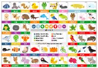 動物・生物の分類表 ...